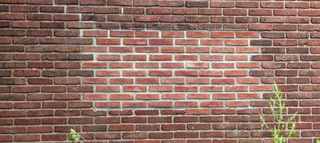 old brick wall: Old grunge brick wall background.