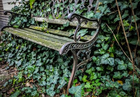 garden furniture: Old classic wooden garden furniture outdoor covered vegetation. Stock Photo