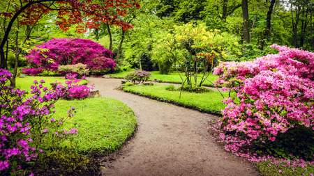 Traditional Japanese Garden in The Hague. Stock Photo