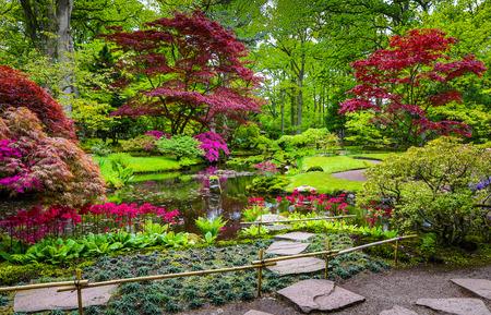Traditionele Japanse Tuin in Den Haag.