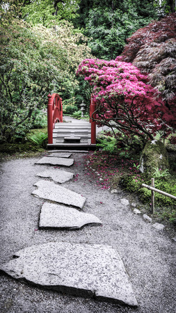 the hague: Traditional Japanese Garden in The Hague. Stock Photo