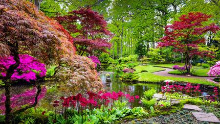 Traditionele Japanse Tuin in Den Haag. Stockfoto - 79747243