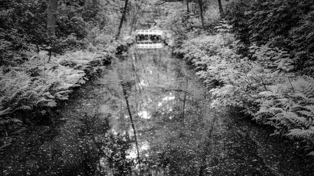 Park with river bridge. Black-white photo. Banque d'images