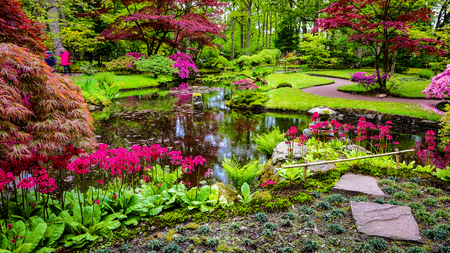 the hague: Traditional Japanese Garden.