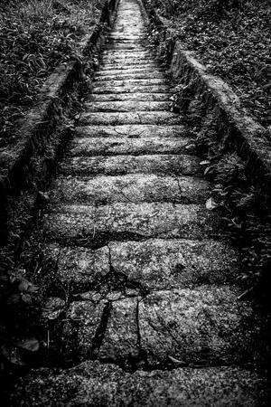 Old stone steps down. Black-white photo.