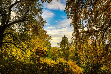 Prague autumn parks.