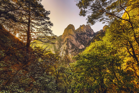Yellow Mountains Huangshan, Anhui Province in China. 免版税图像