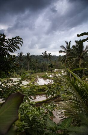 Breathtaking Indonesian traditional tropical islands nature landscape.