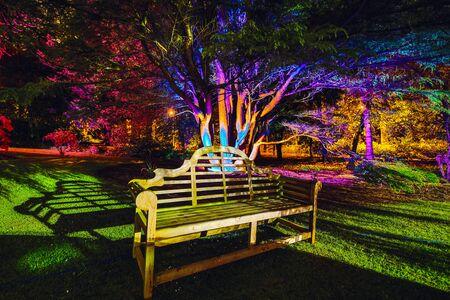 Mehrfarbige Nachtbeleuchtung des schottischen Hausgartens Standard-Bild
