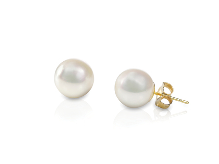 White pearl pieced earrings pair fine jewelry isolated on white Reklamní fotografie