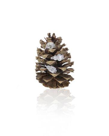 nestled: Diamond rings nestled into a pinecone isolated on white Stock Photo