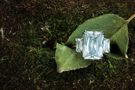 Beautiful three stone diamond engagement wedding ring on a leaf nestled in woodland moss