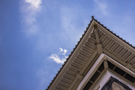 rafter: Temple Blue Sky