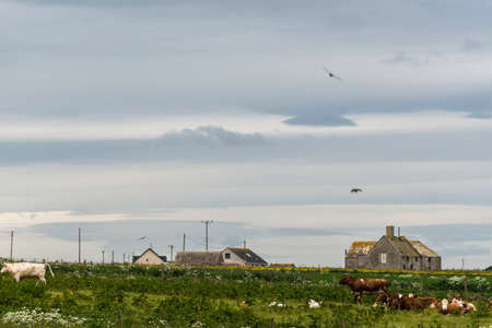 view of farms around John or groats village in Scottish Highlands Imagens