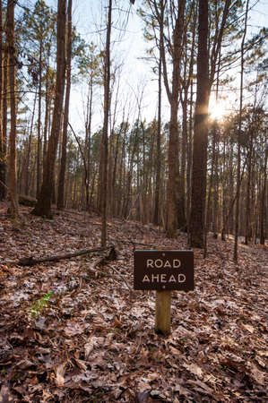 Road ahead sign while hiking in the woods