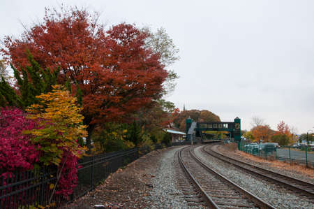 Train tracks with fall foliage