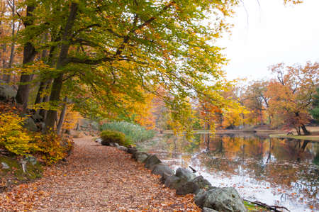 path next to lake with fall foliage