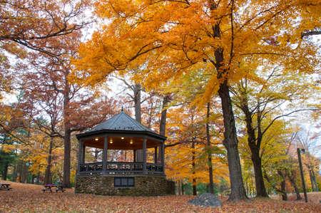 pavilion in fall foliage