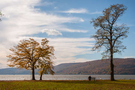 Fall foliage tree with Hudson river and solitary man