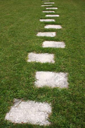 Grass footpath.