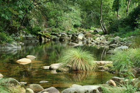 River Scenics