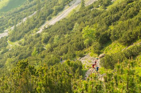 allgau: Trailrunning group of men in the mountains of Allgau, Germany Stock Photo