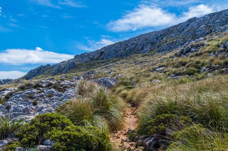 hiking path: Hiking path in the Tramuntana on GR 221, Mallorca, Spain