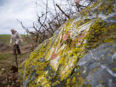 hessen: Hiking on the trail of Lahnwanderweg near Runkel, Hessen, Germany