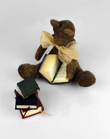 papiermache: Teddy bear reading book white background