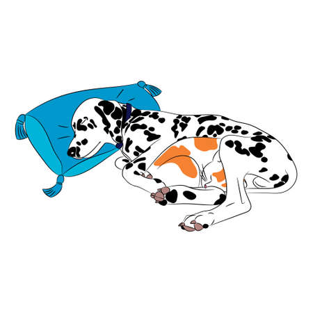 reconciliation: Dalmatian dog and red cat friends sleeping together on a bed vector illustration Illustration