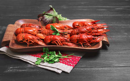 cancers: ancers to beer, dill, boiled crawfish, beer snacks, green leaves of fresh lettuce, parsley, on a special tray for cancers Crayfishon on a black dark wooden background