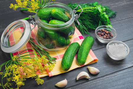 marinated gherkins: Canning pickling fresh homemade cucumbers, pickling or salting.  Greens for canning pickling cucumbers dill, parsley, garlic, pepper, salt. Fresh cucumbers on cloth. Dark black wooden background. Stock Photo