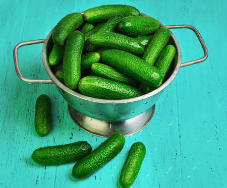 Little fresh green cucumbers in a colander on a vintage wooden background. Several Cucumbers on the table.