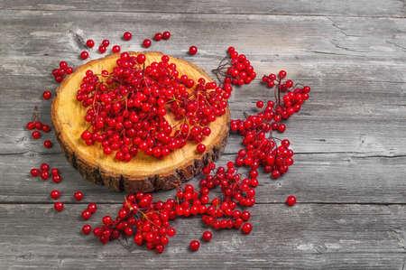 guelderrose: Red Viburnum berries on the round wooden board. Viburnum berries on the table, gray wooden rustic background. Red Guelder-rose berries. Stock Photo
