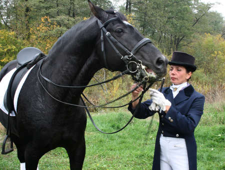 equestrian female spotswoman holds black stallion Stock Photo