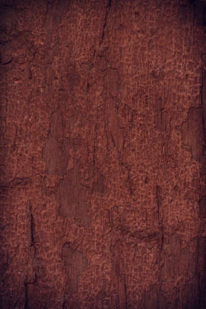 Pintura descascarada en una vieja pared de madera de color marr�n
