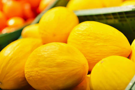 Fresh yellow melons displayed in a greengrocery Stock Photo
