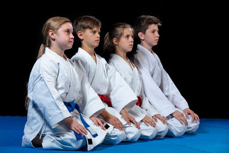 young, beautiful, successful multi ethical karate kids in karate position. Banco de Imagens - 103468646