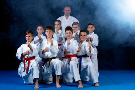young, beautiful, successful multi ethical karate kids in karate position.