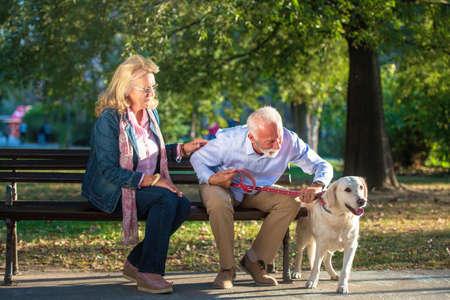 Happy Senior couple outdoors with dog enjoying Stock Photo