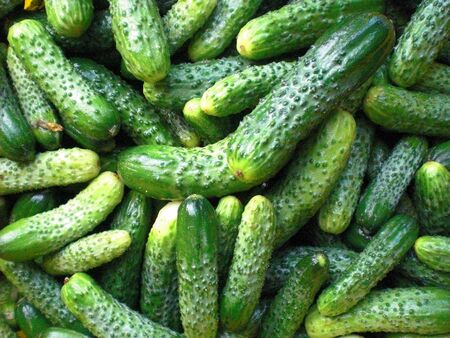 Pickled Cucumbers Background