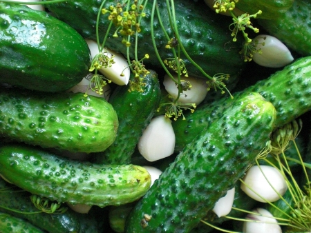 Pickled Cucumbers With Spices Background