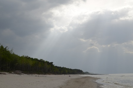 Baltic Landscape with Forest,Beach,Sea and Storm Clouds