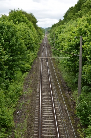 Railroad Tracks Leading Through The Forest