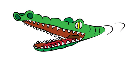 Hungry crocodile with open mouth, full of sharp teeth, swiming in watter.