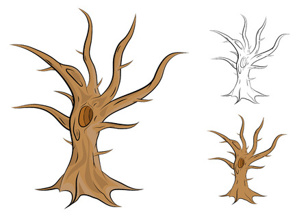 Old, single and leafless tree vector illustration Illustration