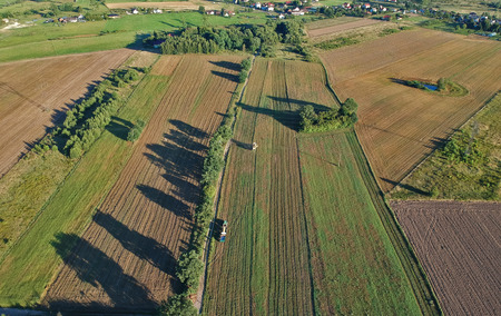 Aerial view on harvester during crops on wheat field. Stock fotó