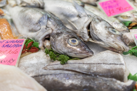 A close-up of freshly caught Trout with parsley on ice on a market stall in the UK