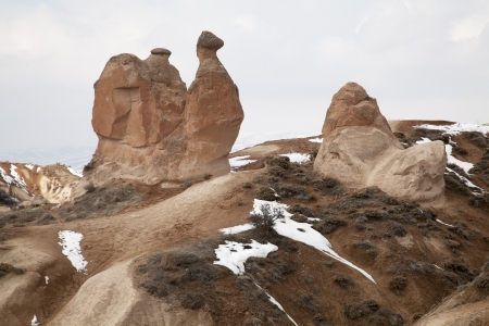 Typical rock formations in Cappadocia, in the form of camels photo