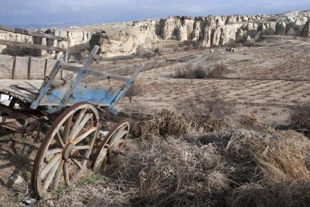 horse-drawn carriage in cappadocia